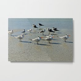 Just a Day at the Beach Metal Print