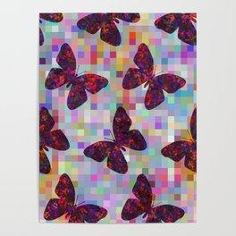 Butterflies 02 Poster