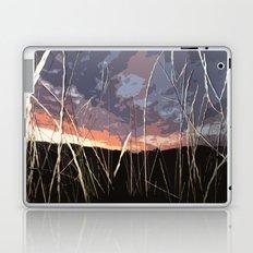 red barn Laptop & iPad Skin