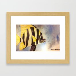 Tropical Fish Framed Art Print
