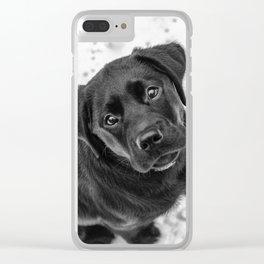 Skye Clear iPhone Case
