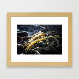 Bundles Framed Art Print