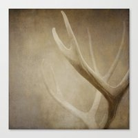 antlers Canvas Prints featuring Antlers by Bella Blue Photography