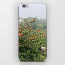 Mountain Mist iPhone Skin