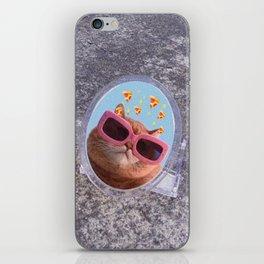 Cat & the Mirror iPhone Skin