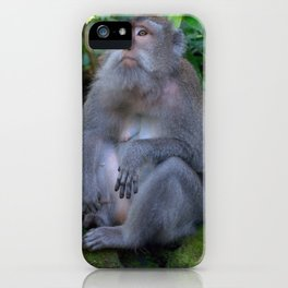 Mother and child macaques - Greg Katz iPhone Case