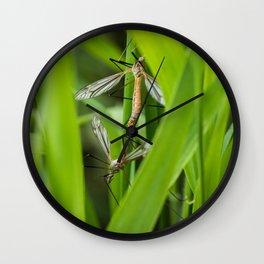 Mating season Wall Clock