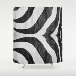 Zebra Animal Print Black White Gray Shower Curtain