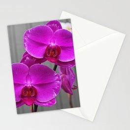 Say Yes Stationery Cards