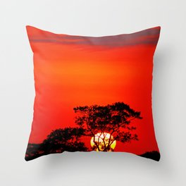 African morning II Throw Pillow