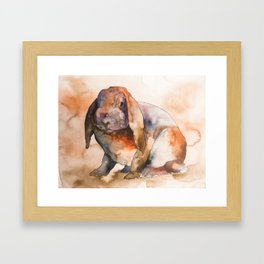BUNNY #3 Framed Art Print