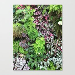 Hanging Gardens Canvas Print