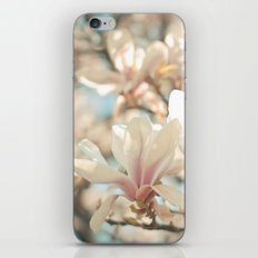 Under the Magnolia Tree iPhone & iPod Skin