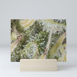 tricomes Mini Art Print