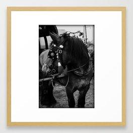 Dutch Drafter black & white Framed Art Print