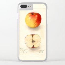 Coxs Orange Pippin Clear iPhone Case