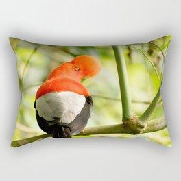 Perching Cock-of-the-Rock Rectangular Pillow
