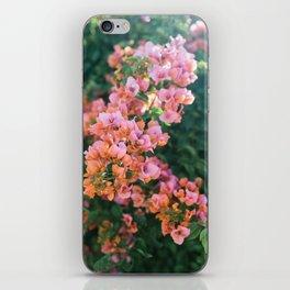 California Bougainvillea iPhone Skin