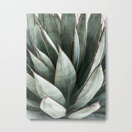 Cactus Leaves // Green Southwest Home Decor Vibes Desert Hombre Plant Photograph Metal Print