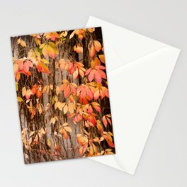 Vitaceae family ivy wall abstract Parthenocissus quinquefolia Stationery Cards