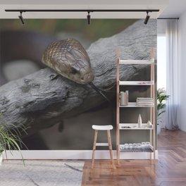 Mulga Brown Snake Wall Mural