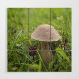 Mushroom in the Morning Dew by Althéa Photo Wood Wall Art