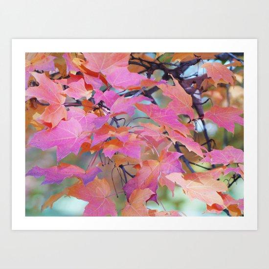 Autumn Rainbow Colors Art Print