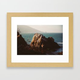 Molero Framed Art Print