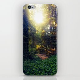 Lead Me Through the Woods iPhone Skin