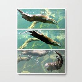 Otter Swim Triptych Metal Print