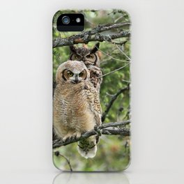 Greathorned owls iPhone Case