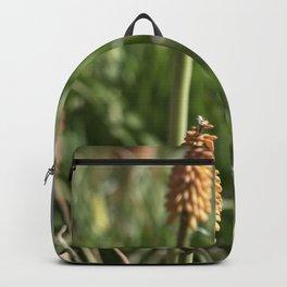 Buds Backpack