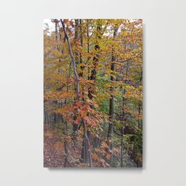 In the Midst of Nature Metal Print
