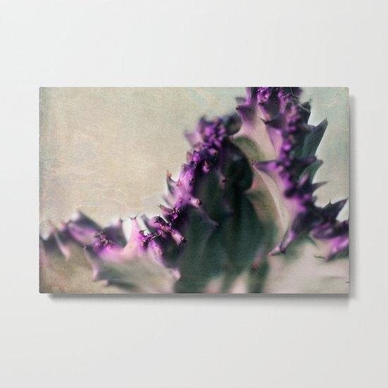 Euphorbia Metal Print
