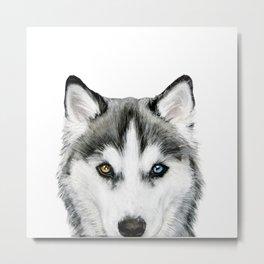 Siberian Husky dog with two eye color Dog illustration original painting print Metal Print