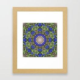 Peacock colors botanical kaleidoscope, mandala - Anagallis, Blue pimpernel flowers Framed Art Print