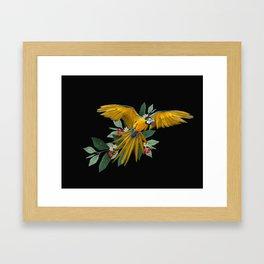 Ara Ararauna Framed Art Print