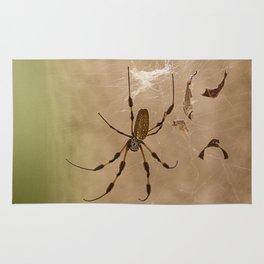 Florida banana Spider Rug
