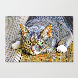 The TABBY II from our FUNK YOUR FELINE line Canvas Print