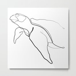 The Sea Turtle Line - Black & White Metal Print