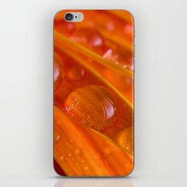 orange peas in a pod iPhone Skin