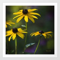 daisies Art Prints featuring Daisies by Christina Rollo