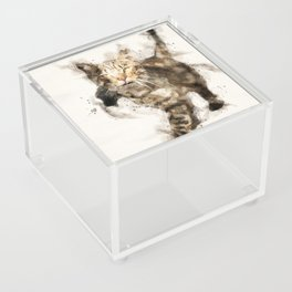 Cat Acrylic Box