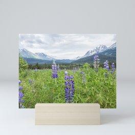 Lupin and the Beauty of Alaska Mini Art Print