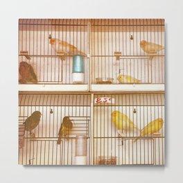 Marche Aux Oiseaux 2 Metal Print