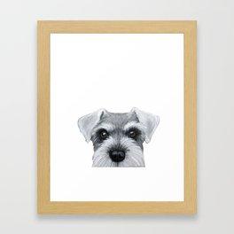 Schnauzer grey S Dog illustration original painting print Framed Art Print