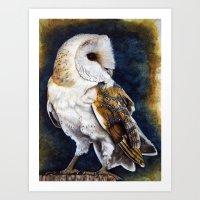 charmaine Art Prints featuring Barn Owl Print by Charmaine Diedericks