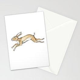 Spring rabbit Stationery Cards