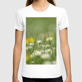 Daisy meadow T-shirt