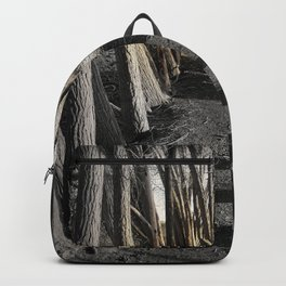 Path of Shadows Backpack